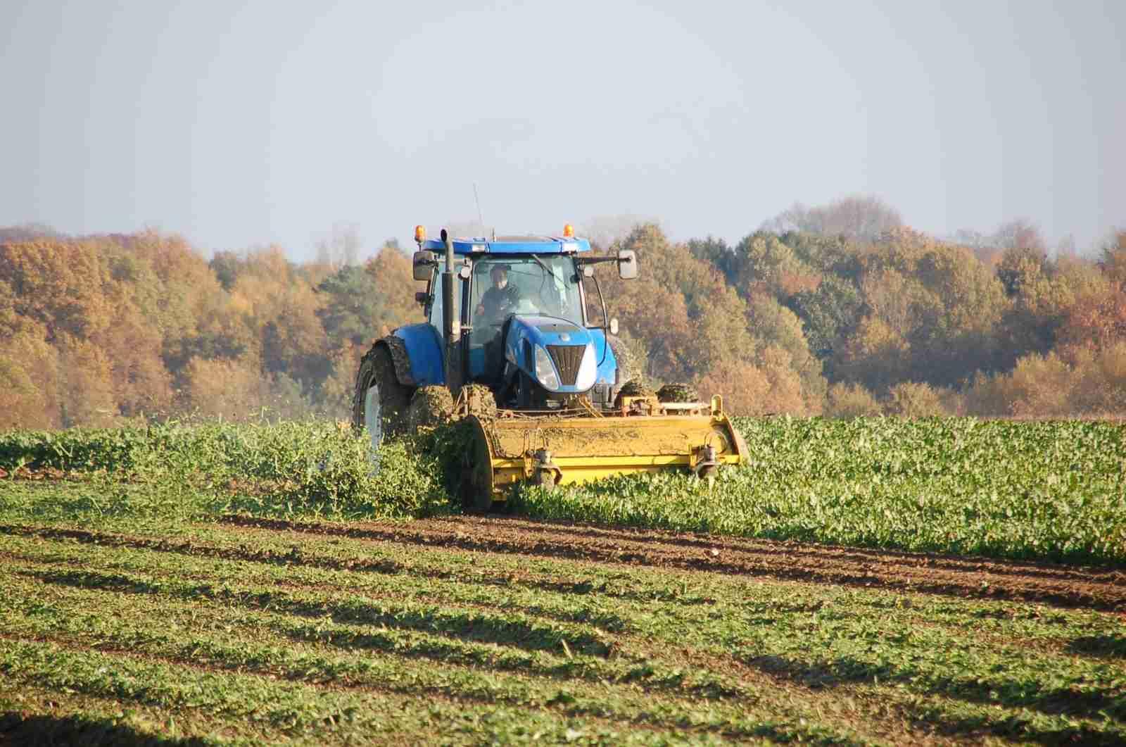 Finanziamenti fondo perduto agricoltura 2018