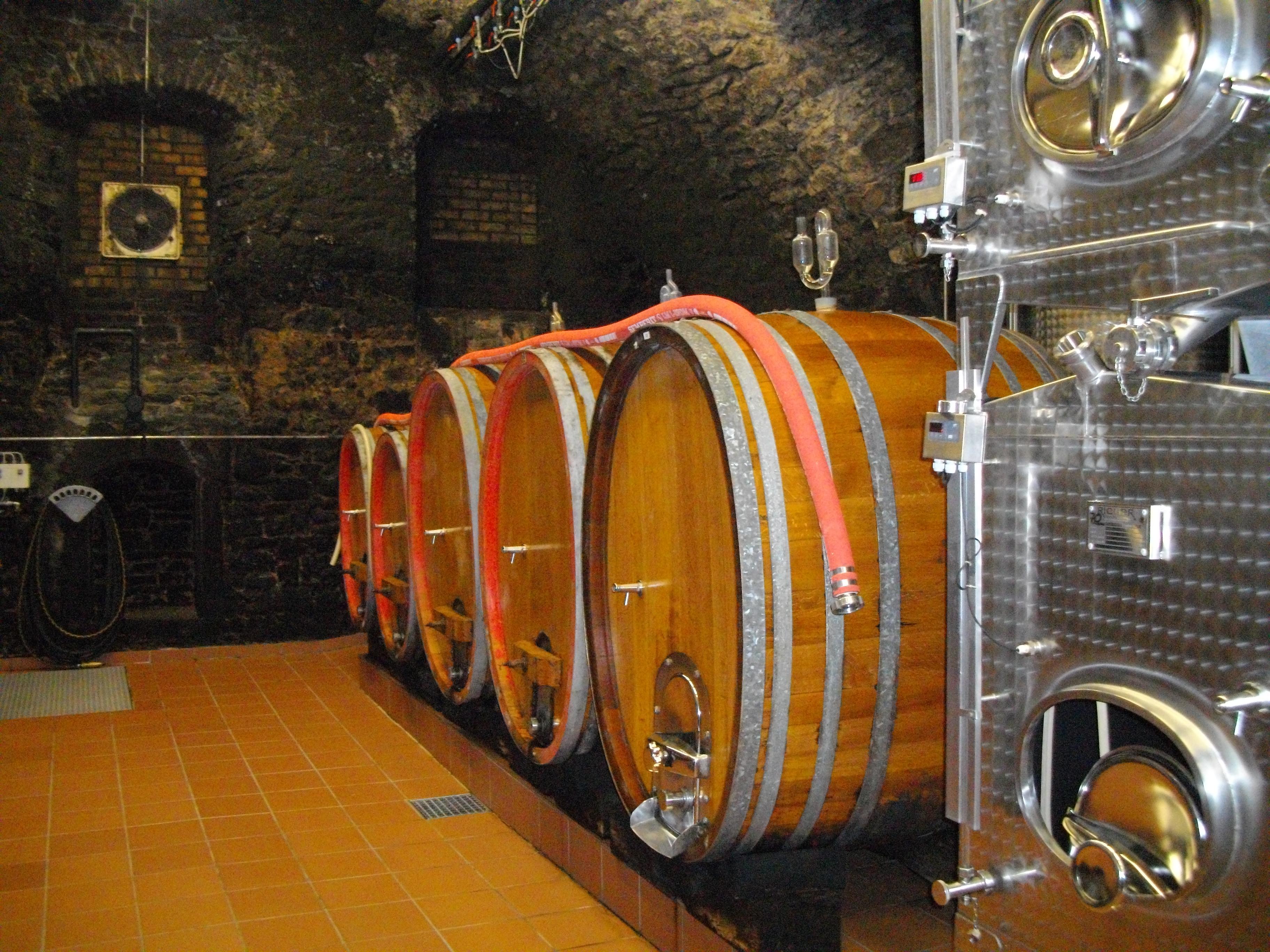 Ocm vino investimenti, guida alla misura 2015/2016