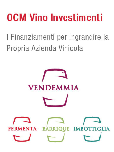 ocm vino investimenti