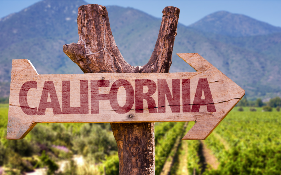 Wine Country: la California diventa la patria del vino USA