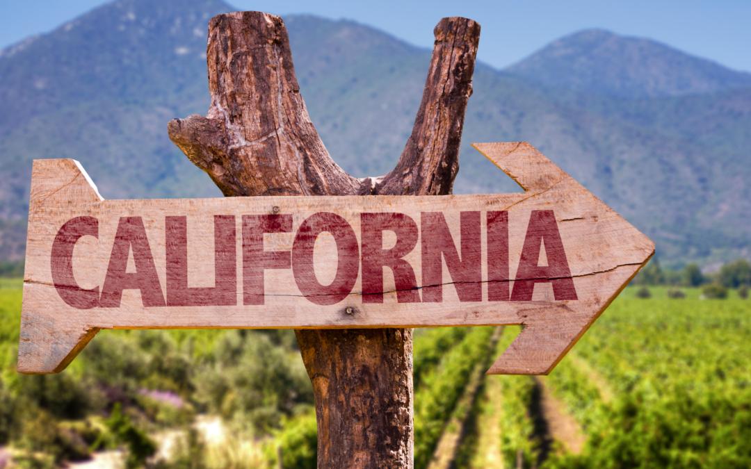 Wine Country: la California diventa la patria del vino USA