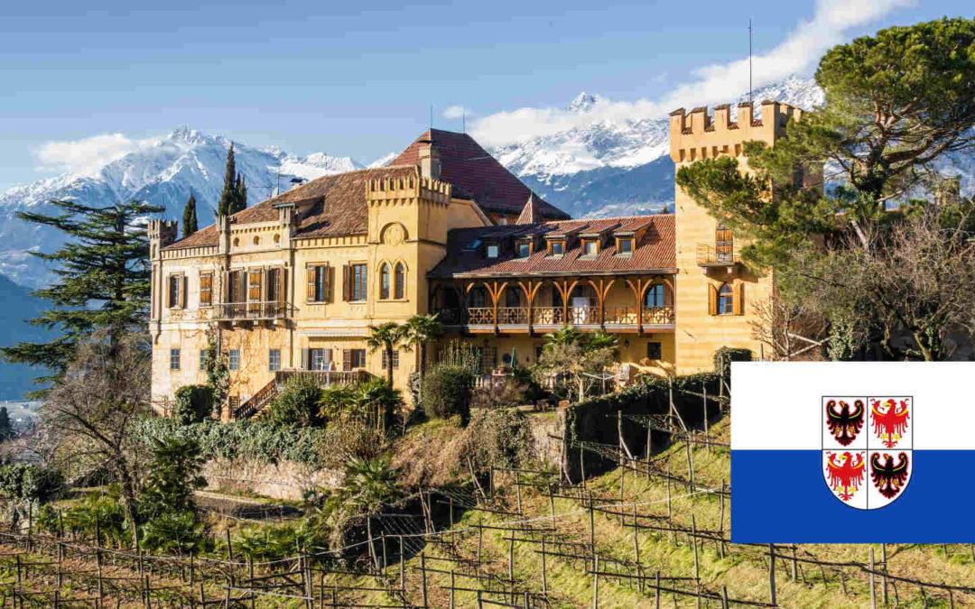 L'Alto Adige punta sulla qualità del vino: nuove strategie di successo