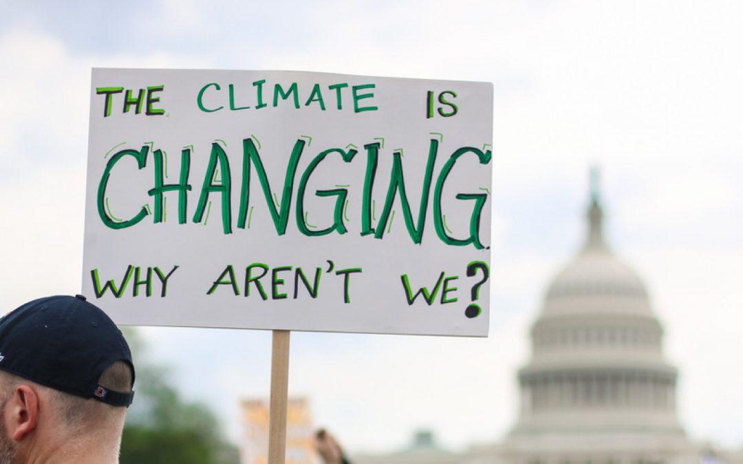 Il cambiamento climatico sta rivoluzionando la produzione di vino