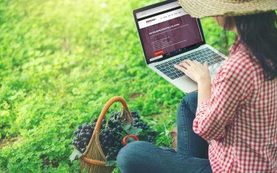 Senza fiere, cantine e importatori si incontrano online