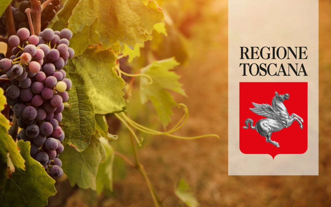 Regione Toscana: bando da 13,5 milioni di euro per export vino